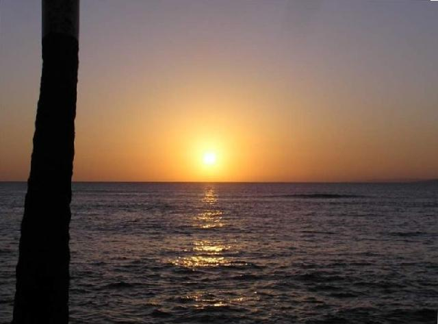 Pohailani 128-Spectacular West Maui sunsets at an approx. 1 minute walk - Lahaina - Hawaii